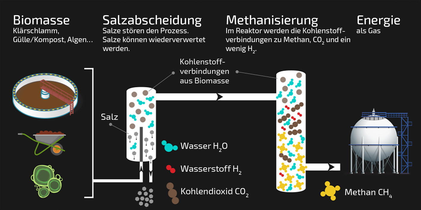 Charmant Freie Schematische Zeichnung Zeitgenössisch - Der ...